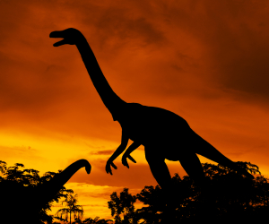 dinosaurlongneck